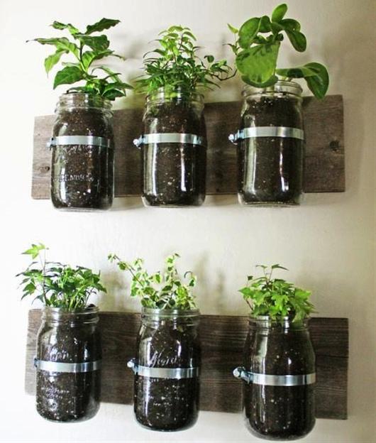 Kitcehn Herb Jars