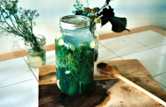 Lacto-Fermented Dill Pickles | Witchin' in the Kitchen