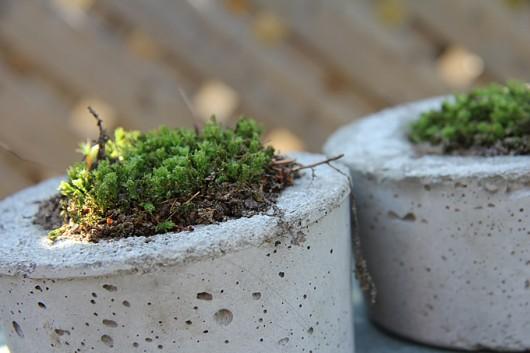 Little House Blog | DIY Concrete Planters