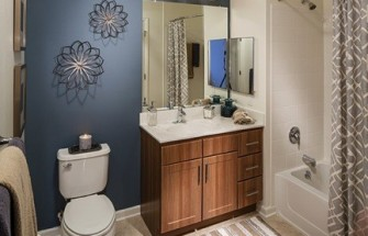 Avalon Ossining Bathroom