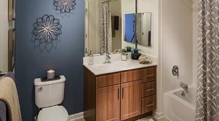 Avalon Ossining Bathroom